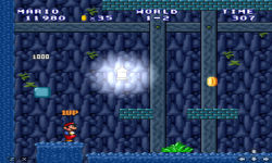Mario Forever Flash screenshot 5/6