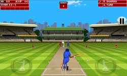 T20 Premier League 2015 screenshot 4/6