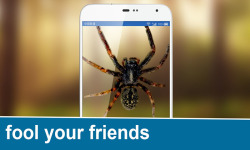 Real Spider On Hand FREE screenshot 3/3