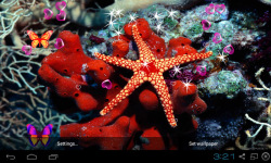 3D Starfish Live Wallpaper screenshot 2/5