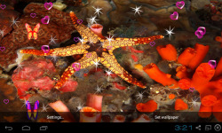 3D Starfish Live Wallpaper screenshot 5/5