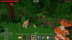 Minecraft Pocket Edition top screenshot 6/6