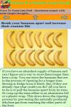 Ways To Waste Less Food screenshot 3/3