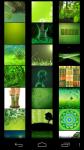 Green Wallpapers free screenshot 1/5