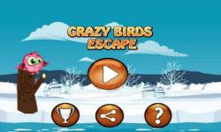 Crazy Birds Escape Flying Game screenshot 1/4