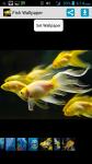 Free Fish Wallpaper screenshot 1/4