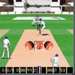 Cricket Fever Handygo screenshot 2/2