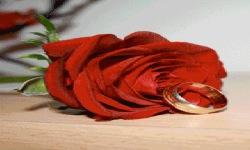 Ring Rose Live Wallpaper screenshot 2/3