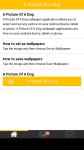 A Picture Of A Dog screenshot 1/6