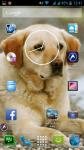 A Picture Of A Dog screenshot 6/6