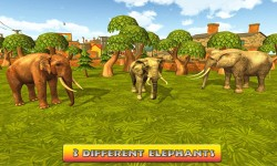 Elephant World 2016 screenshot 2/4