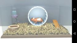 Rationalization Hamster screenshot 1/6