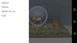 Rationalization Hamster screenshot 2/6