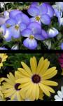 Best Flowers Gallery screenshot 4/5