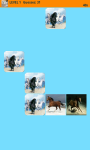 Horses Memory Game screenshot 5/6