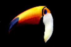 Zoo screenshot 1/1