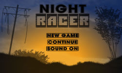 Night Racer screenshot 1/4