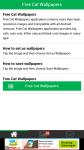 Free Download Cat Wallpapers screenshot 1/6