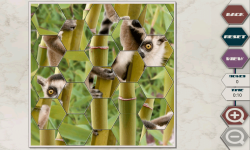 Hex Saw Zoo screenshot 2/6