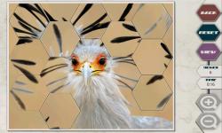 Hex Saw Zoo screenshot 3/6