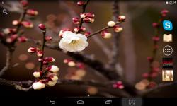 Spring Wallpaper Live screenshot 4/4