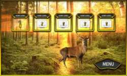 hunting Jungle Animals games screenshot 1/3