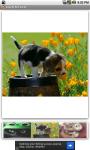 Lovely Pet Farm screenshot 1/3