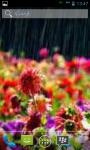 Best 50 Rain Garden Wallpaper  screenshot 2/6