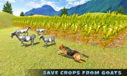 Real Shepherd Dog Simulator screenshot 2/5