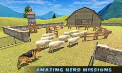 Real Shepherd Dog Simulator screenshot 4/5