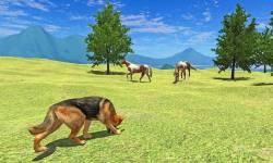 Real Shepherd Dog Simulator screenshot 5/5