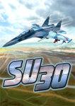 Su-30 screenshot 1/6