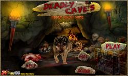 Free Hidden Object Games - Deadly Caves screenshot 1/4