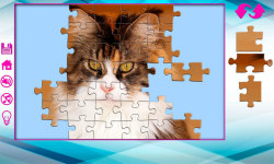 Big puzzles with cats screenshot 5/6