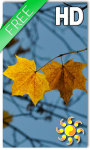 Autumn LWP HD Free screenshot 1/2