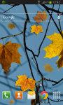 Autumn LWP HD Free screenshot 2/2