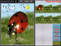 Magic Jigsaw Puzzle Lite screenshot 5/5