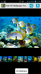 Free Download Fish HD Wallpaper screenshot 1/4