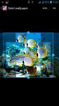 Free Download Fish HD Wallpaper screenshot 3/4