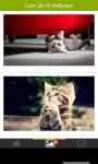 Cute Cats HD Wallpaper Free screenshot 2/3