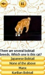 Cat Breeds Quiz screenshot 1/4