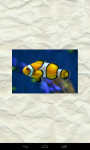 Guess Fish screenshot 1/6
