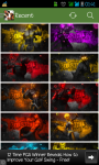 Best Street Fighter 2015 Wallpaper screenshot 1/1