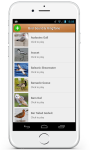 Bird Sound Song Ringtone screenshot 1/3