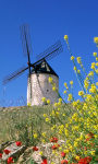 Windmills Wallpapers app screenshot 1/3