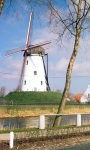 Windmills Wallpapers app screenshot 3/3