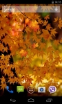 Autumn 3D Live Wallpaper Parallax screenshot 2/4