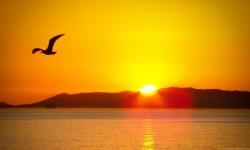 HD Sun Rise Live Wallpaper screenshot 2/6