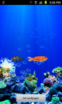 Under water Fish Live Wallpaper screenshot 3/5