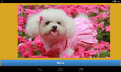 Dogs jigsaw puzzle game	 screenshot 4/6